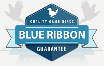 Blue ribbon pheasant game bird guarantee