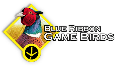 Blue Ribbon Game Birds Logo Pheasants, Chukar Partridge and More